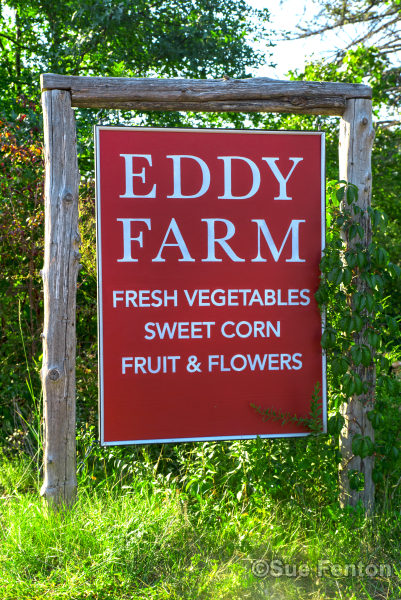 Roadside Sign for Eddy Farm