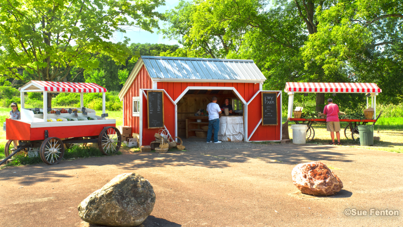View of Eddy Farm roadside stand