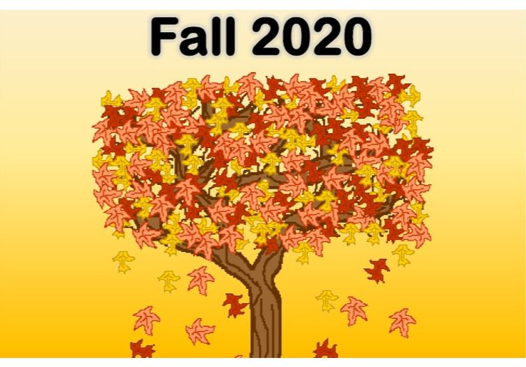 Fall 2020 Program Guide Cover with a picture of a tree with yellow and orange leaves falling